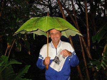 banana_leaf_umbrella - Dahon sa saging - Pulong Bisaya